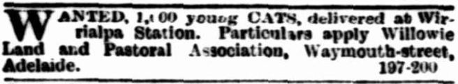 the-advertiser-16-july-1892